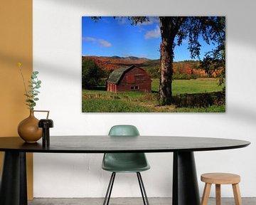 Old barn van lieve maréchal