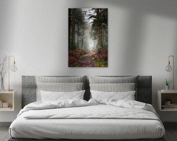 Pad door de bossen van de Lage Vuursche van Pascal Raymond Dorland