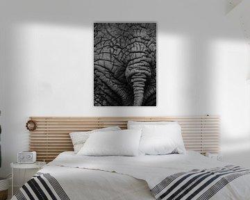 The end of the elephant von Ton van Buuren