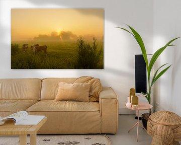 Koeien in mistige polder van Remco Van Daalen