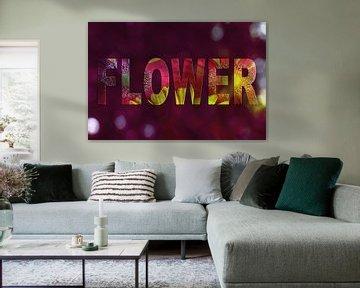Flower von zwergl 0611