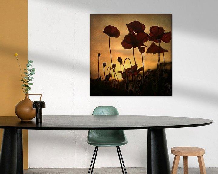 Sfeerimpressie: sunset poppies van bob van den berg
