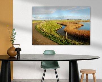 Westfriese omringdijk van Willem Visser