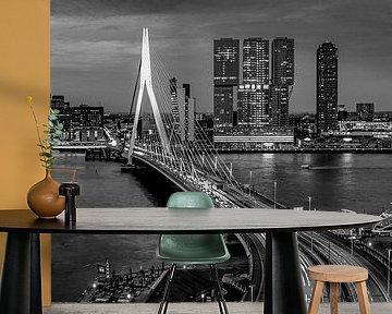Skyline Rotterdam by Night  - Rotterdams Finest !  ZW van Sylvester Lobé
