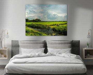 Fries Landschap van Michel Aalders