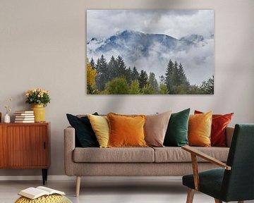 bergen in de wolken met bos op voorgrond von Ferry Kalthof