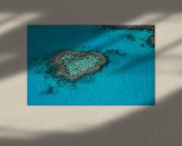 Heart Reef van Victor Droogh