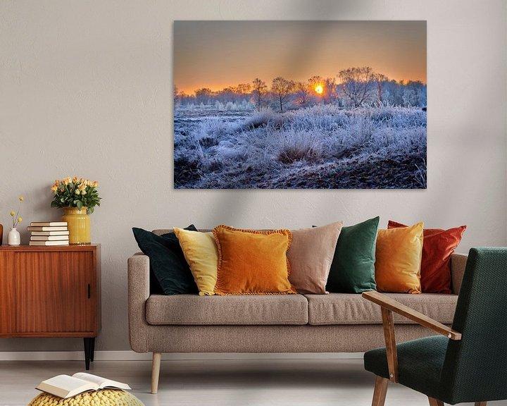 Sfeerimpressie: Arcen Wellerlooi Maasduinen Winterlandschap van Twan van den Hombergh