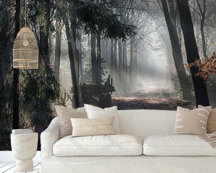 Impression: car in forest with sunbeams in winter landscape sur ChrisWillemsen