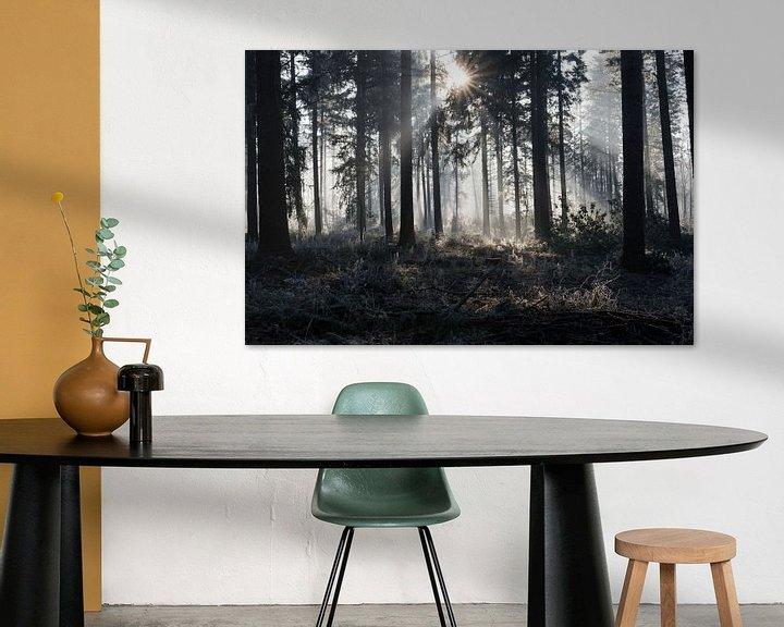 Impression: sunbeams in winter landscape sur ChrisWillemsen