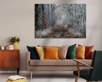 sprookjesachtig bospad van Silvia van Zutphen
