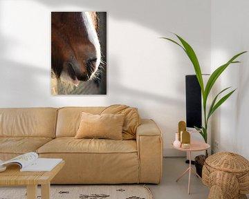 Paard in rust. van Grietje van der Reijnst-Brak