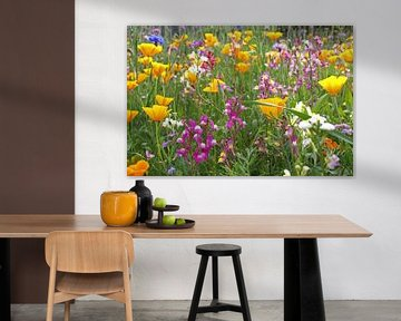 Kleurrijk veld wilde bloemen