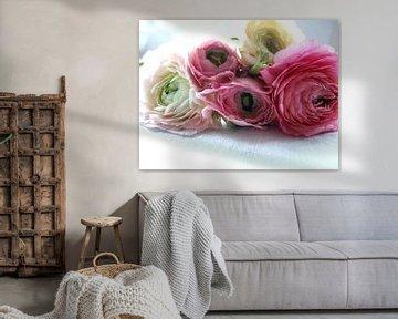 roze en witte ranonkels  von Nicolet Reus