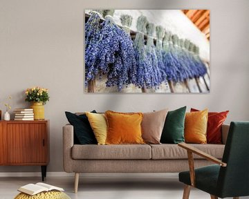 Lavendel van Wim Demortier