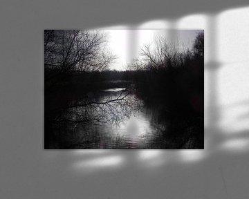 Winter zon weerspiegeling in het water. van Ingrid Van Maurik