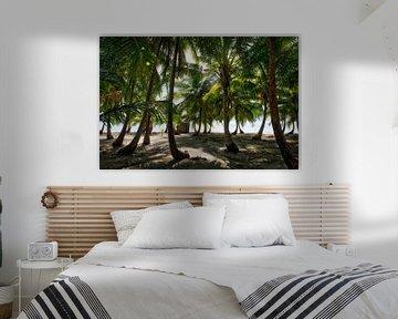 Tropisch palmboom strand