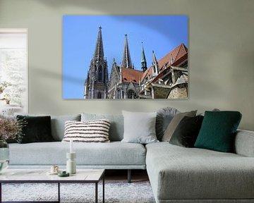 Regensburger Dom von Liz Collet