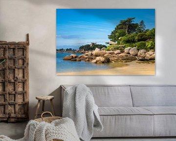 Rosa Granitküste in der Bretagne bei Ploumanach, Frankreich von Rico Ködder