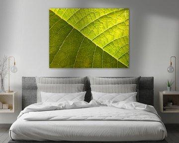 bladnerven groen van Joke te Grotenhuis