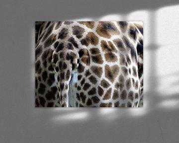 Hartje op billen van giraffe van Petra Dielman