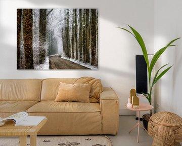 Winter in Velhorst van Lars van de Goor