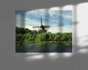 Typisch Nederlands van Piet van Winkel