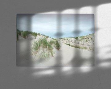 """Duinen op de nieuwe """"Maasvlakte 2"""" #4793 van Daan Overkleeft"""