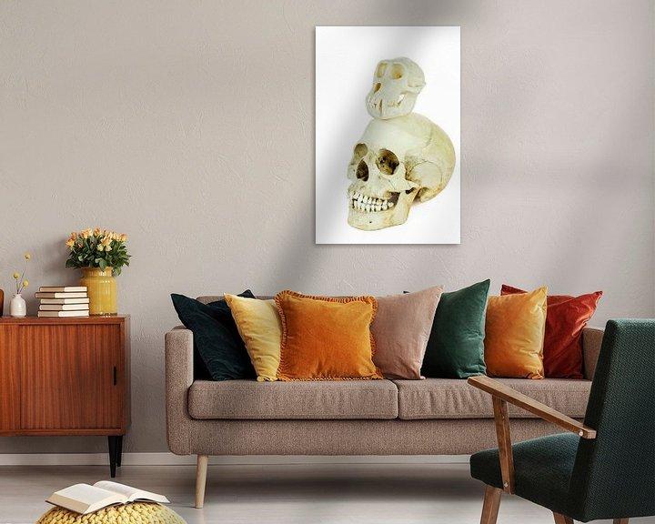 Sfeerimpressie: Schedels van mens en aap bovenop elkaar van Ben Schonewille
