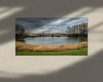 Can you feel the wind? van Ingeborg Ruyken