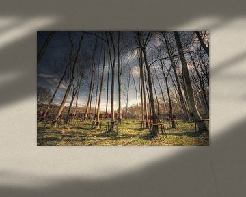 Landschap - Stoelen van Angelique Brunas