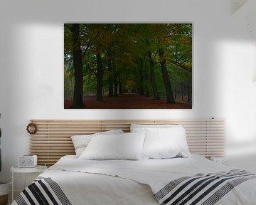 Autumnleaves van Ivo Heus