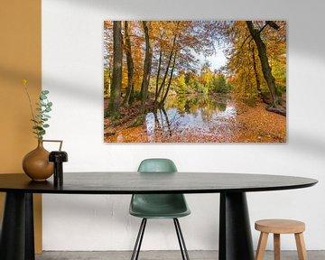 Bosvijver bedekt met bladeren van beukenbomen in herfst van Ben Schonewille