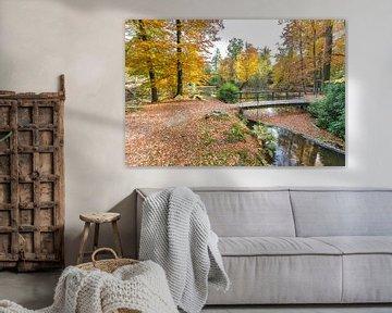 Bos met vijver en brug in herfstkleuren van Ben Schonewille