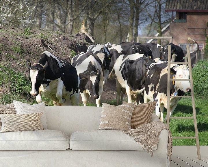 Sfeerimpressie behang: Happy Cows van Marcel van Rijn