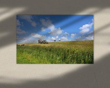 Hollandse polder  sur Remco Van Daalen