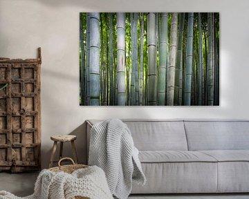 De stam van de bamboe von Ineke Huizing
