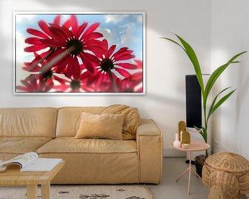 Bloemen anders bekeken van Ineke Verbeeck