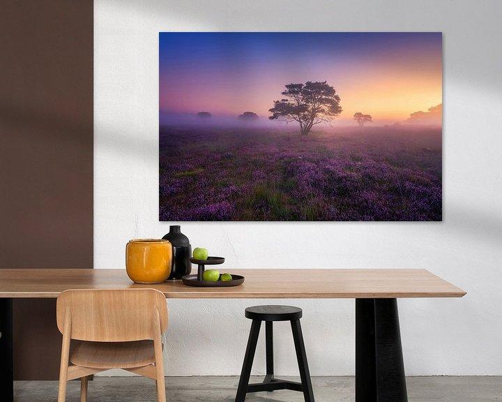 Sfeerimpressie: Paarse Heide Hilversum van Albert Dros