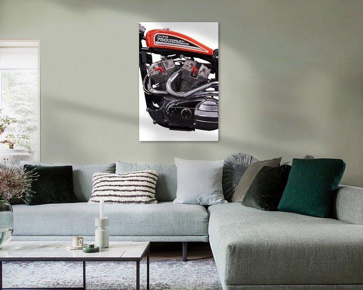 Sfeerimpressie: Harley-Davidson XR-750 van Michelle Peeters