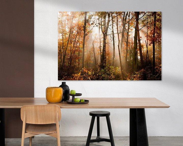 Impression: Herfst sur Beernt Sietsma