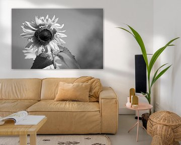 zonnebloem zwart/wit von Eugene Lentjes