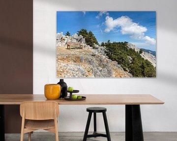 Bankje op berg met rotsen en bomen van Ben Schonewille