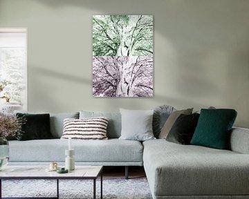 Tree Magic 142-C van MoArt (Maurice Heuts)