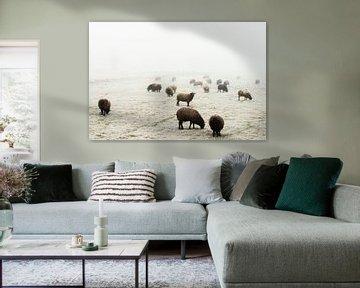 schaapjes tellen van Yvonne Blokland
