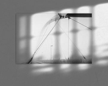 De Oversteek in mist von eusphotography