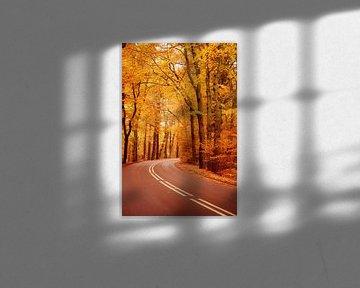The Autumn Road...  van LHJB Photography