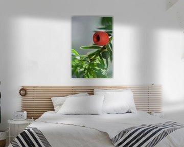 Rote Johannisbeere der Eibe von Tot Kijk Fotografie: natuur aan de muur