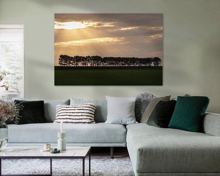 Sfeerimpressie: Avondlicht op bomenrij in Zeeland van Tot Kijk Fotografie: natuur aan de muur