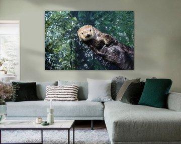 zeeotter van Jop Fotografie